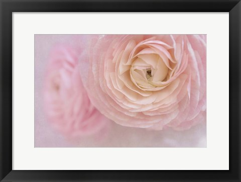 Framed Soft Pink Flower Bouquet Print