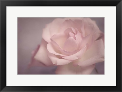 Framed Tenderness Print