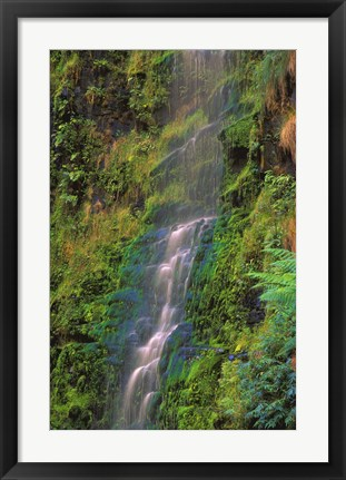 Framed Water fall on Green Print