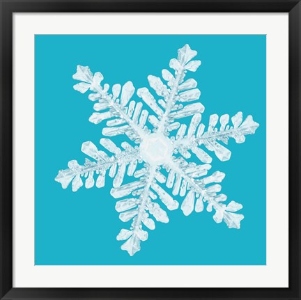 Framed Snowflake on Teal Print