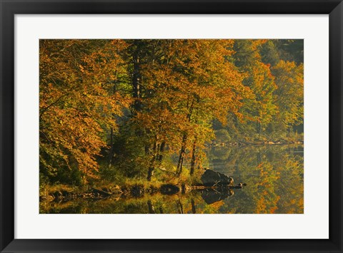 Framed Fall Foliage on the Water Print