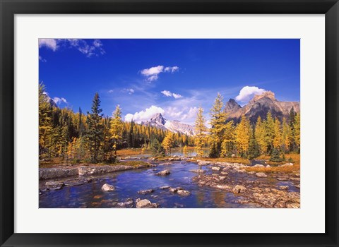 Framed Mountain Stream Print