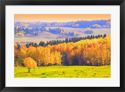 Framed Yellow Trees in Landscape Print