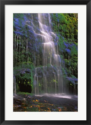 Framed Majestic Waterfall Print