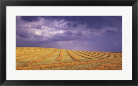 Framed Storm Clouds Over the Fields Print