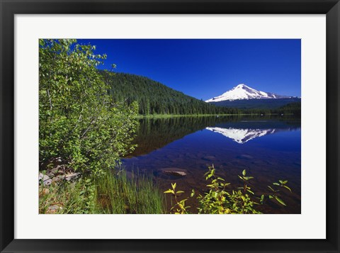 Framed Snowy Mountain Reflection Print