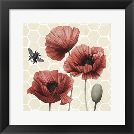 Framed Poppy Buzz I Print