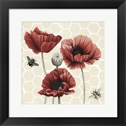 Framed Poppy Buzz II Print