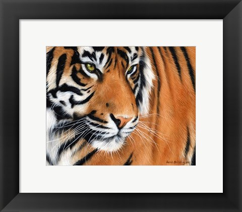 Framed Tiger Crop Print