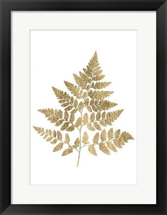 Framed Graphic Gold Fern I Print