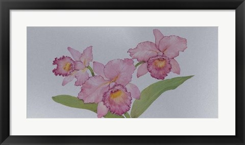 Framed Exotic Flowers I Print
