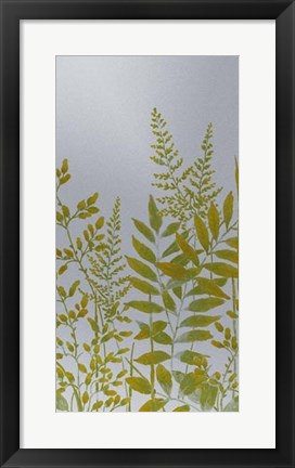 Framed Pattern of Leaves II Print