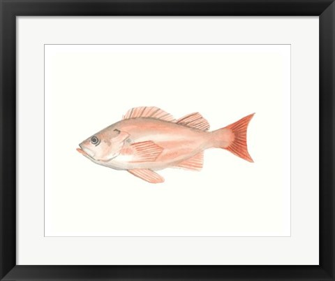 Framed Watercolor Deep Sea Fish I Print