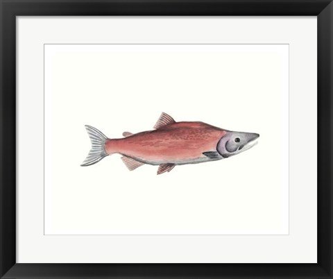 Framed Watercolor Deep Sea Fish III Print