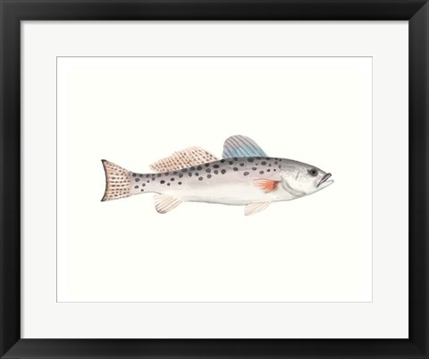 Framed Watercolor Deep Sea Fish IV Print