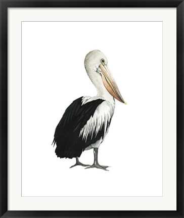 Framed Sea Bird IV Print