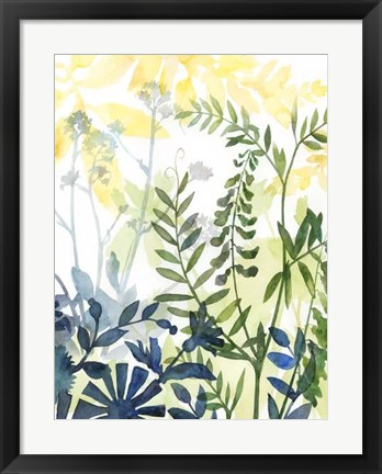 Framed Layered Blooms II Print