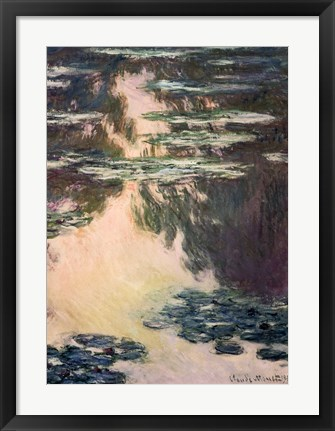 Framed Waterlilies with Weeping Willows, 1907 Print