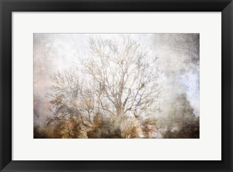 Framed Winter in Champagne Print