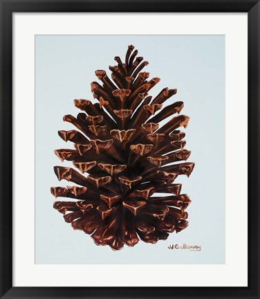 Framed Guilded Pinecone Print