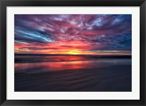 Framed Nature's Palette Print