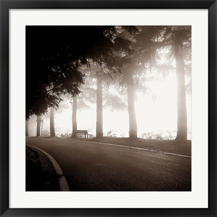 Framed Roadside Bench Print