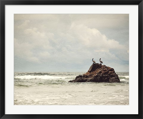 Framed Pelican Brief Print