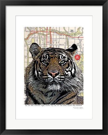 Framed Kansas City Tiger Print