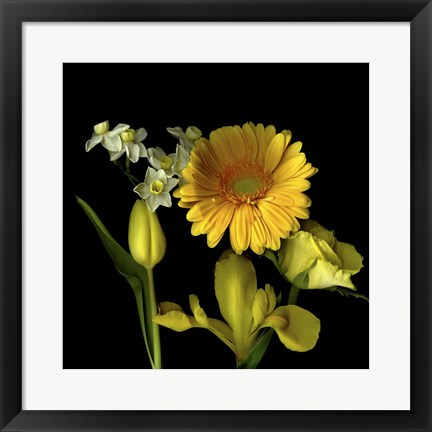 Framed Spring Flowers 2 Print
