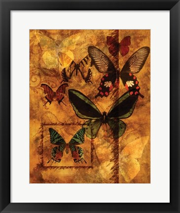 Framed Evocation Of Butterflies Print