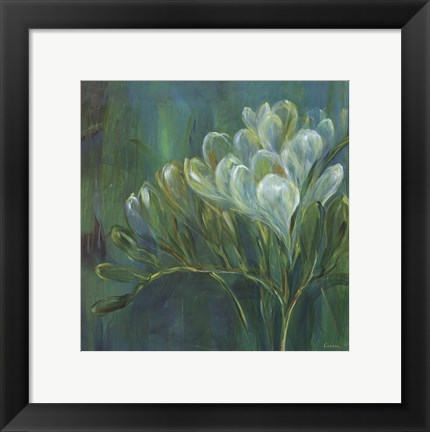 Framed Freesia Blues I Print