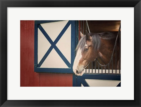 Framed Patriotic Pony I Print