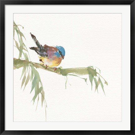 Framed Finch Print