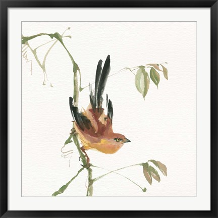 Framed Mountain Bush Warbler Print