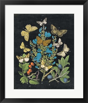 Framed Butterfly Bouquet on Black II Print