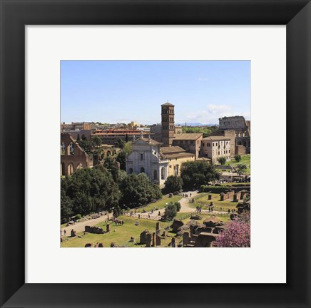 Framed Look from Palatine Hill Francesca Romana Print