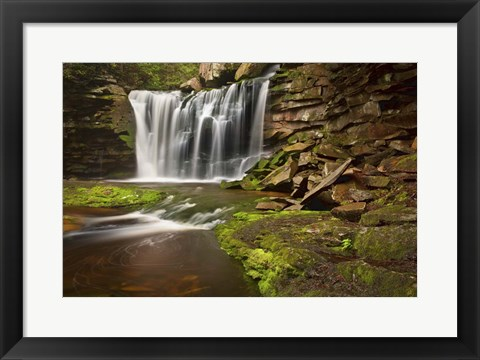 Framed Spring At Elakala Falls Print