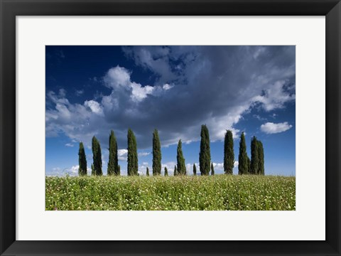 Framed Clouds over Cypress Hill Print