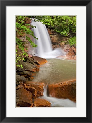 Framed Spring at Douglas Falls Print