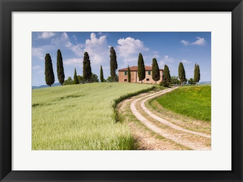 Framed Tuscan Classic Print
