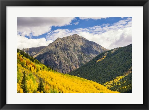 Framed Aspen Slope Print