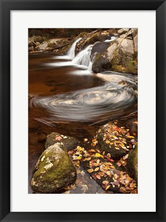 Framed Autumn Swirly Print