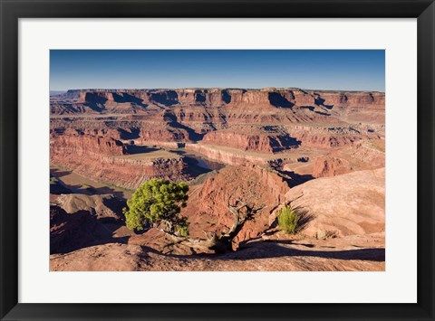 Framed Canyonlands Sunrise Print
