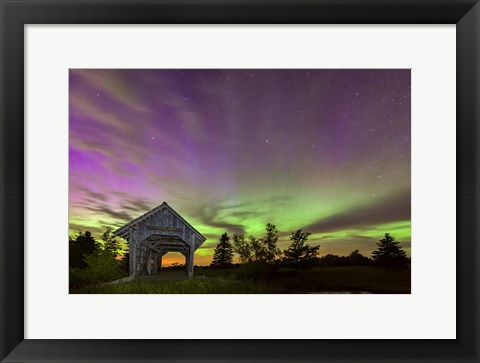 Framed Play of Colors Print