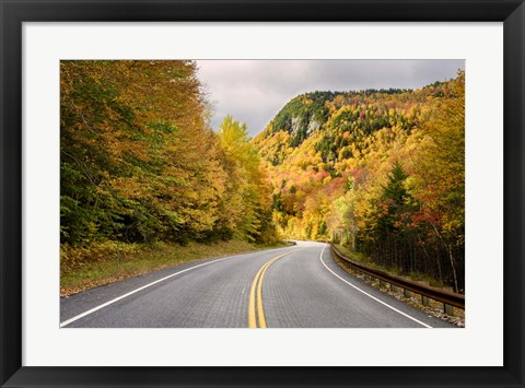 Framed Way to Foliage Print
