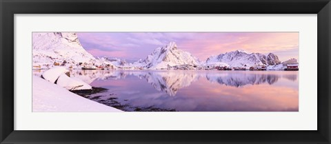 Framed Pink Majesty - Panorama Print