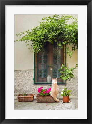 Framed Maurice the Cat Print