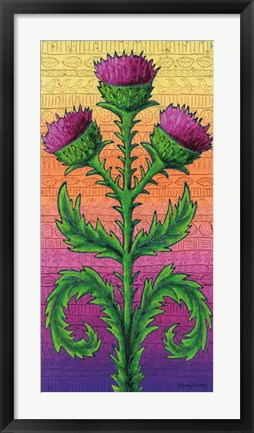Framed Thistle Print