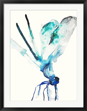 Framed Blue & Green Dragonfly Print