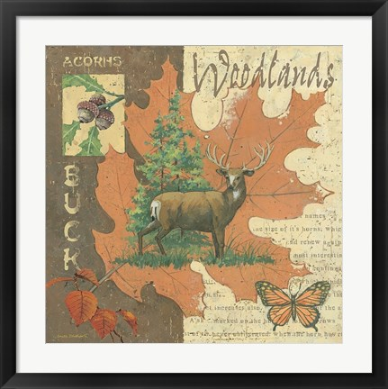 Framed Woodlands Buck Print